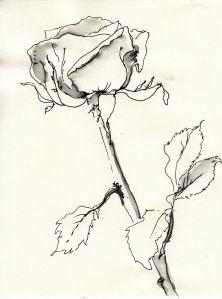 Rose Nr. 169