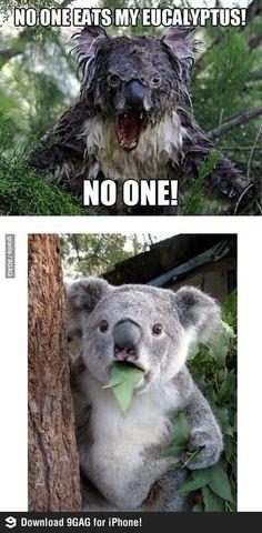 Omg I laughed soooo hard! Bahaha