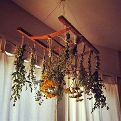Create a drying rack for your garden herbs and flowers from the back of an old chair.