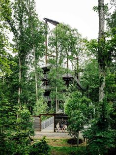treehouse torre