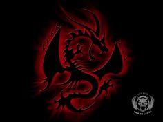 Ice Dragon Wallpaper Downloads  Amazing Wallpaperz