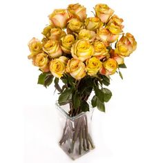 Two Dozen Yellow Roses Bouquet with Vase and Luxury Gift Box from RoseSource.com.