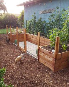 U Shaped Raised Garden Beds Design . U Shaped Raised Garden Beds Design . Fenced Vegetable Garden, Vegetable Garden Design, Raised Garden Bed Plans, Raised Beds, Concrete Patios, Design Jardin, Garden Fencing, Garden Cottage, Diy Garden Decor