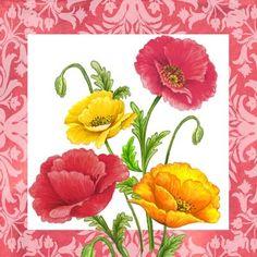 Spring Color Poppies By Elena Vladykina