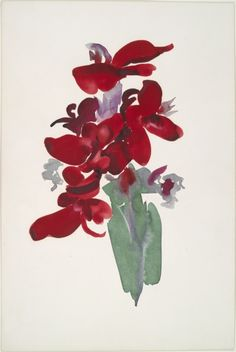Georgia O'Keeffe, Red Canna, 1915. Watercolor. Yale University Art Gallery