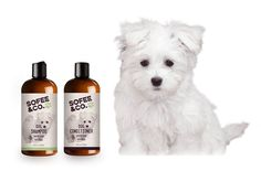 Natural dog shampoo & conditioner