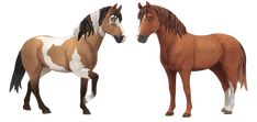 Star Stable Horses, Curly Horse, Drawing Stars, Online Games For Kids, Star Citizen, Horse Breeds, Stables, Outfits, Horses