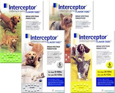 Interceptor, prevents heartworm infection, and removes/controls adult roundworms and whipworms in dogs and puppies.