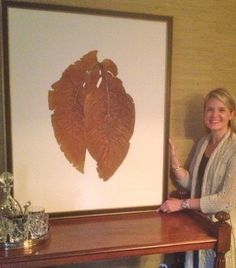 Dried and Pressed SC TOBACCO Leaves  looked fab in Anne's and Tom's Dining Room!  Size 33x41  www.urbangardenbotanicals.com