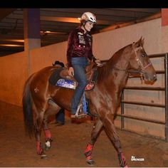 Horse Tack, Horse Stalls, Horse Barns, Fallon Taylor, Reining Horses, Rodeo Life, Cowgirl And Horse, Western Riding, Barrel Horse