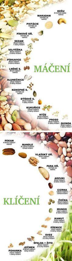 Jak klíčit semínka - čerstvé domácí klíčky - klíčení luštěnin a semínek - DIETA.CZ Plant Based Recipes, Raw Food Recipes, Vegetarian Recipes, Healthy Recipes, Vegan Gluten Free, Paleo, Gaps Diet, Fruit Snacks, Sweet And Salty