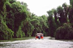 A Day In the Danube Delta | Chique Romania Danube Delta, Romania, Country Roads, Day, Littoral Zone