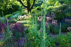 Garten der Sinne - Merzig (D) / Gärten in Deutschland / Unsere Gärten / Gärten ohne Grenzen / Startseite - Gärten ohne Grenzen