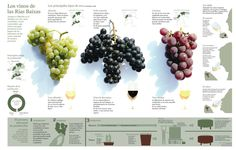 Traditional wine production methods