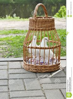 vannerie tipi spain - Google Search Willow Weaving, Basket Weaving, Rattan Basket, Wicker, Wedding Newspaper, Arts And Crafts, Diy Crafts, Birch Bark, Paper Basket