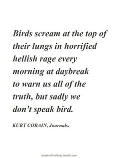 If this is the case, I'm actually ok with not speaking bird