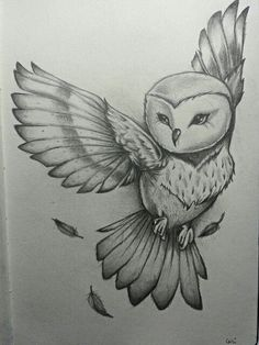 By Cari Espinosa. Owl drawing / sketch – You are in the right place about drawings beautiful Here we offer you the most beautiful pictures … Amazing Drawings, Cool Drawings, Amazing Art, Drawings Of Owls, Easy Drawings Of Animals, Tattoo Drawings, Pencil Art Drawings, Art Drawings Sketches, Good Sketches