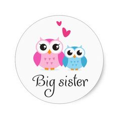 cute owl pics | ... owls one big pink as the big sister and one smaller blue owl as the
