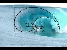 Fibonacci number ~ Fibonacci ~ sacred geometry & the flower of life ~ The Sacred of Geometry ~ Sacred Geometry and Ancient Knowledge . Geometry Art, Sacred Geometry, Geometry Architecture, Geometry Tattoo, Architecture Tattoo, Architecture Design, Fibonacci Sequence In Nature, Fibonacci Spiral In Nature, Spirals In Nature