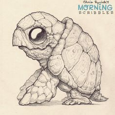 I like turtles  #morningscribbles