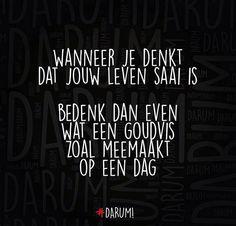 #darum Favorite Quotes, Best Quotes, Love Quotes, Funny Quotes, Inspirational Quotes, Qoutes, Dutch Words, Dutch Quotes, Pep Talks
