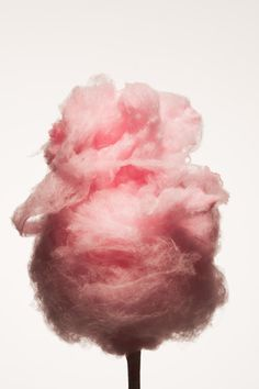 Wallpaper Rosa Pink Pretty Cotton Candy Ideas For 2019 Pink Wallpaper Iphone, Pink Iphone, Candy Photography, Amazing Photography, Pink Photography, Creative Photography, Xavier Veilhan, Pink Images, Pink Cotton Candy
