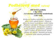 BYLINKOVÁ HOLKA: PODBĚLOVÝ MED VAŘENÝ Med, Cantaloupe, Fruit, Blog, Syrup, The Fruit, Blogging