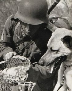 A German Wehrmacht soldier having some fun with a bird (what kind?) and a dog, World War 2.