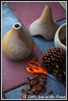 how to: http://alittlefurinthepaint.blogspot.com/2012/12/the-fairy-house-revisited.html ....started with two dried birdhouse gourds, one just slightly larger than the other.The first step was to cut the top off the gourd (just a couple of inches) that I planned to use for the main part of the house in order to fill it with sand, so it wouldn't blow away outside.Then, I had Mr. B cut the top off the other gourd(approximately half -way down) for the roof ~ I drew on the gourd