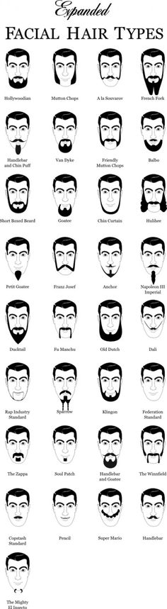 Quest for a Beard of Every Type Facial Hair - See hipsters? You're not cool and your beard is weird!Facial Hair - See hipsters? You're not cool and your beard is weird! Beards And Mustaches, Moustaches, Types Of Facial Hair, Facial Hair Styles, Types Of Beards, Beard Types, Type Chart, Mens Facial, Men Facial Hair