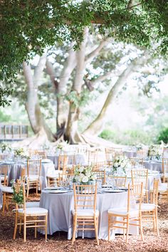 Beautiful garden reception with light blue table linens and natural chiavari chairs. #outdoor #garden #wedding