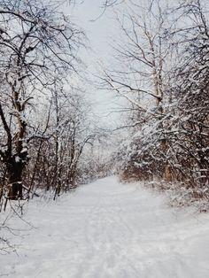 Neige - Noël *<3* Winter wonderland!