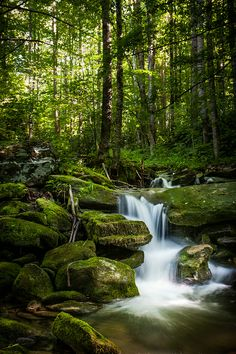 Peaceful scene in the Smokey Mountains. Love this little creek and all the moss… Peaceful scene in the Smokey Mountains. Love this little creek and all the moss covered rocks. Landscape Photos, Landscape Paintings, Landscape Photography, Nature Photography, Photography Tips, Portrait Photography, Wedding Photography, Beautiful Waterfalls, Beautiful Landscapes