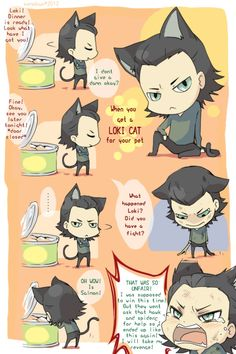 When you decide to get a Loki cat