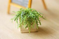 Dollhouse Miniature Plants  Green Fern in by miniaturepatisserie, $30.90