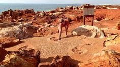 Dinosaur footprints in Broome, Western Ausralia