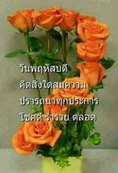รูปภาพ Special Flowers, Say Hi, Beautiful Roses, Good Morning, Buen Dia, Bonjour, Good Morning Wishes