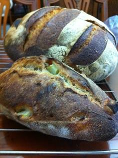 Apple sour dough  Whole wheat