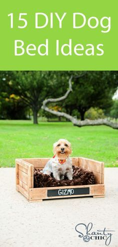 Diy Dog Beds 12 Dol Diy Dog Beds 12 Dollar Dog Bed Make This