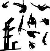 natation silhouette : vecteur de collection plongée de style libre  Illustration