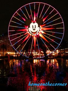 What we did on our summer vacation? We went to California Adventure and Disneyland! Come over and take a look!