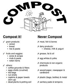 What to compost and not to