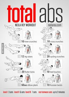 Total Abs + Muscle Map