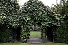 secret gardens and hidden nooks of north london Amazing Gardens, Beautiful Gardens, Regents Park London, London Location, Hampstead Heath, London Garden, English House, Things To Do In London, London Bridge