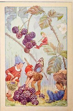 Whortleberry Fairies - The wild fruit fairies by Marion St. John Webb, 1925