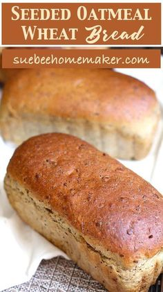 Recipes – Food and Drink Recipe Ideas Whole Wheat Seeded Bread Recipe, Honey Wheat Bread, Wheat Bread Recipe, Flour Recipes, Bread Recipes, Baking Recipes, Candy Recipes, Brunch Recipes, Bagels