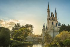 Explore things to do in Orlando, Florida Photo by David Bjorgen