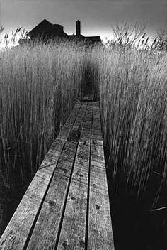 Jeanloup Sieff, La maison noire, East Hampton, New York, 1964