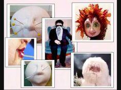 sculpting faces DVD by Kat Lees