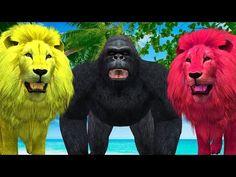 Animals Finger Family Rhymes | Animals Nursery Rhymes | Daddy Finger Family Song | Preschool Songs - YouTube